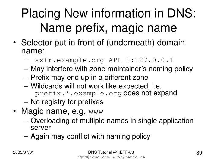 Placing New information in DNS: Name prefix, magic name