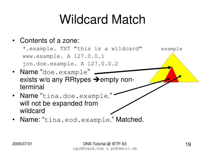 Wildcard Match