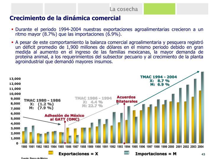 TMAC 1994 - 2004