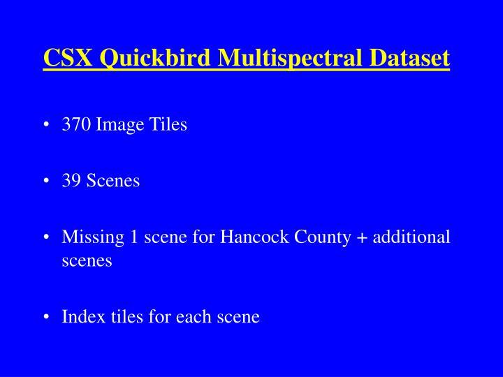 CSX Quickbird Multispectral Dataset