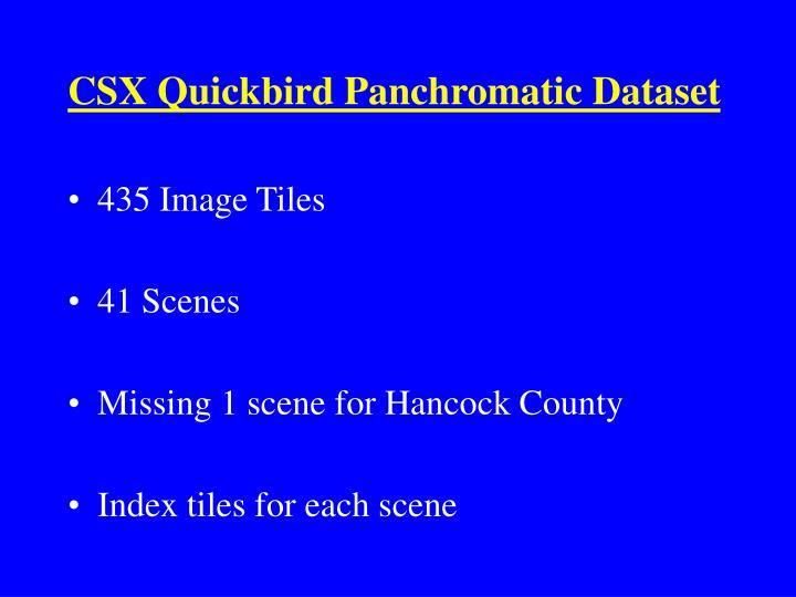 CSX Quickbird Panchromatic Dataset