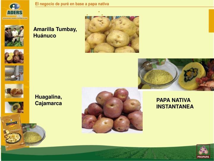 Amarilla Tumbay, Huánuco