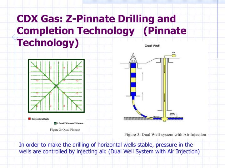 CDX Gas: Z-Pinnate Drilling and Completion Technology   (Pinnate Technology)