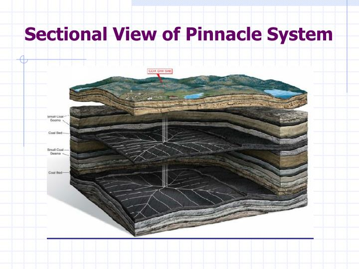 Sectional View of Pinnacle System
