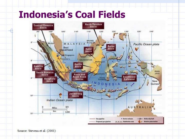 Indonesia's Coal Fields