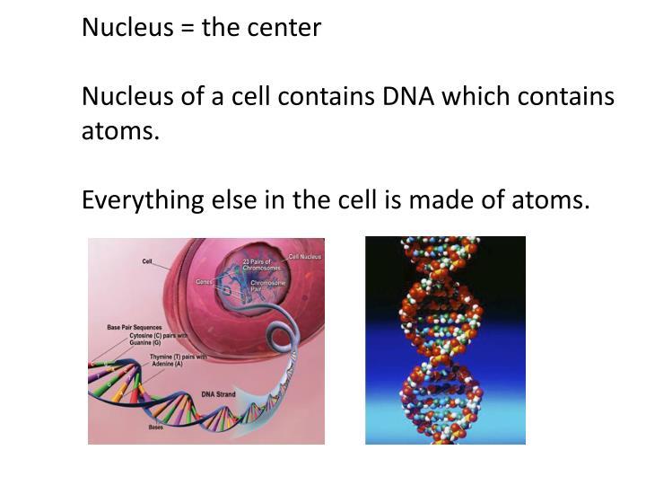 Nucleus = the center