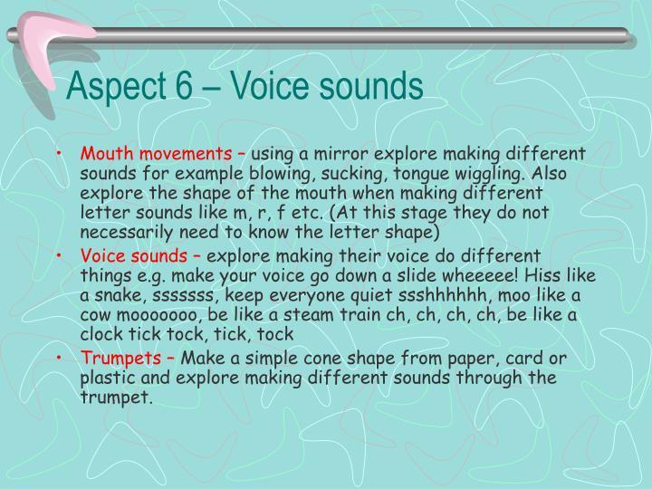 Aspect 6 – Voice sounds