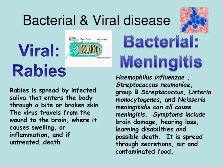 Bacterial & Viral disease