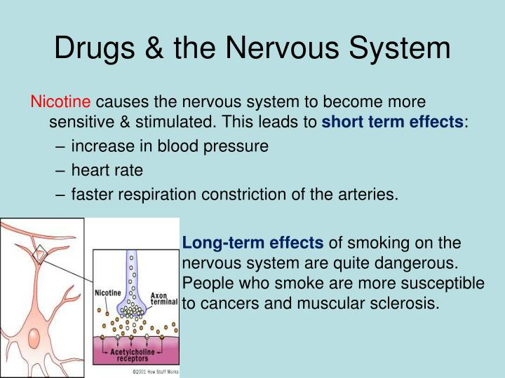 Drugs & the Nervous System