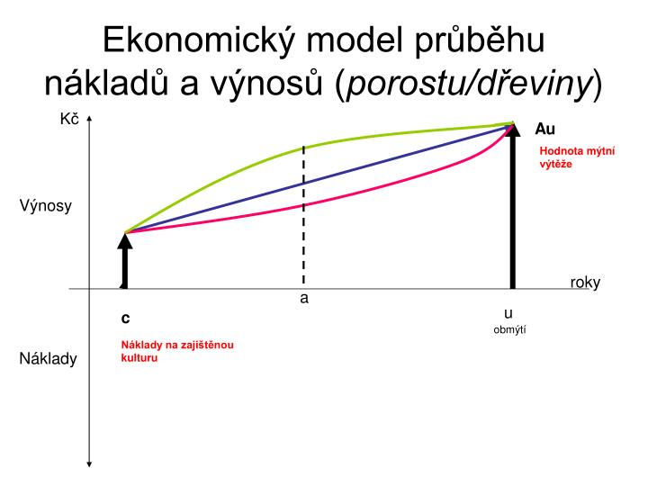 Ekonomický model průběhu nákladů a výnosů (