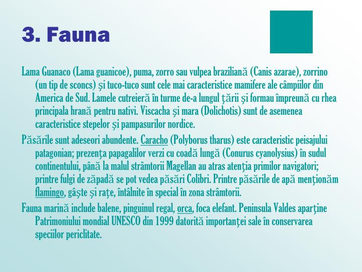 3. Fauna