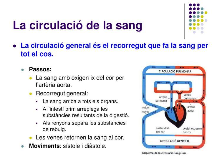 La circulació de la sang