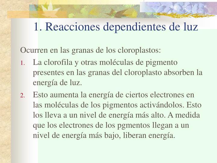 1. Reacciones dependientes de luz
