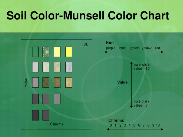 munsell soil color chart 10yr page - ppt growing plants hydroponically vs in soil