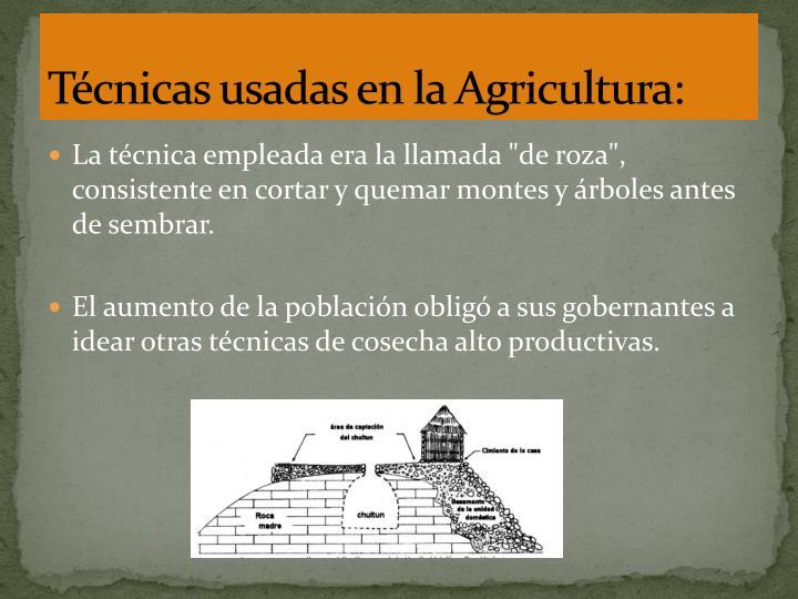 Técnicas usadas en la Agricultura: