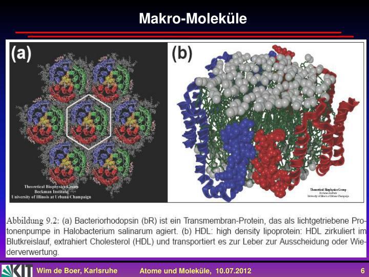 Makro-Moleküle