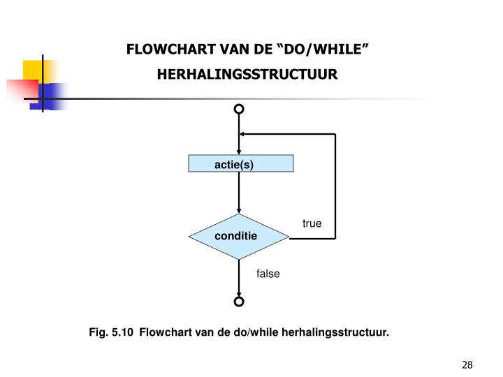 "FLOWCHART VAN DE ""DO/WHILE"""