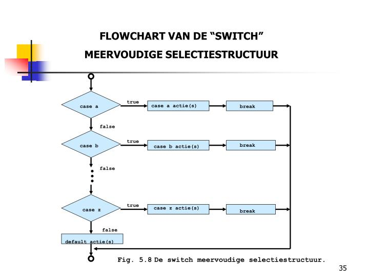 "FLOWCHART VAN DE ""SWITCH"""