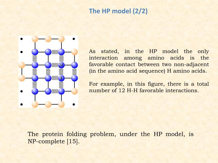 The HP model (2/2)