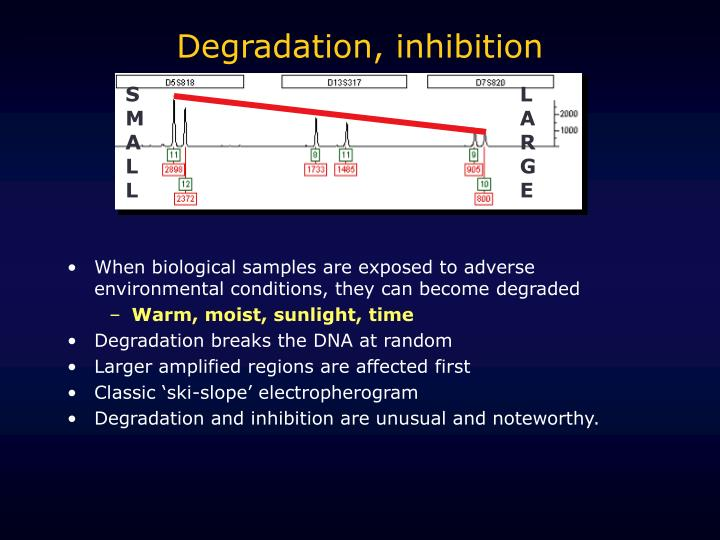 Degradation, inhibition