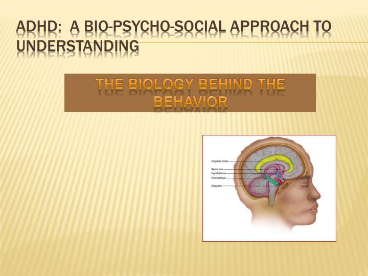 ADHD:  A bio-Psycho-Social Approach to Understanding