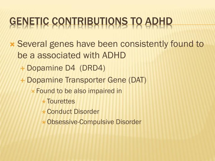 Several genes have been consistently found to be a associated with ADHD