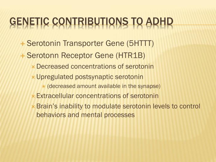 Serotonin Transporter Gene (5HTTT)