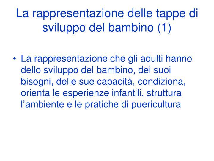 La rappresentazione delle tappe di sviluppo del bambino (1)