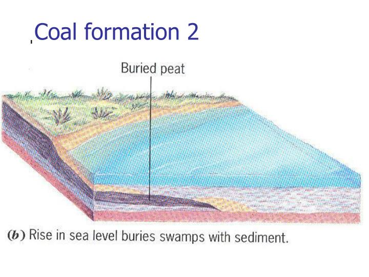 Coal formation 2