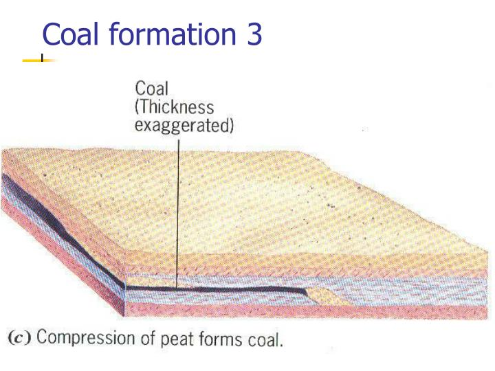Coal formation 3