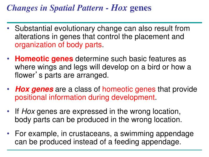 Changes in Spatial Pattern -