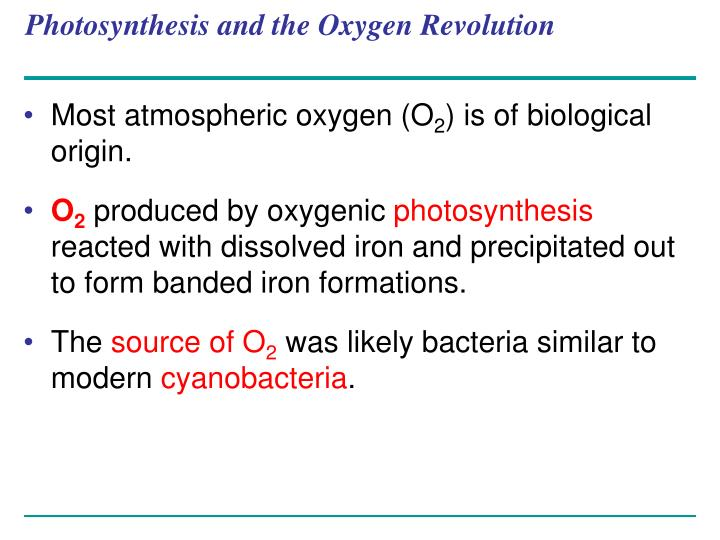 Photosynthesis and the Oxygen Revolution