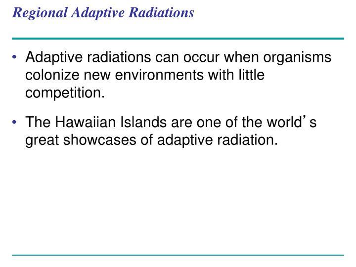 Regional Adaptive Radiations