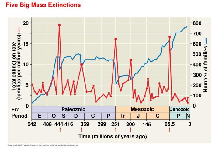 Five Big Mass Extinctions