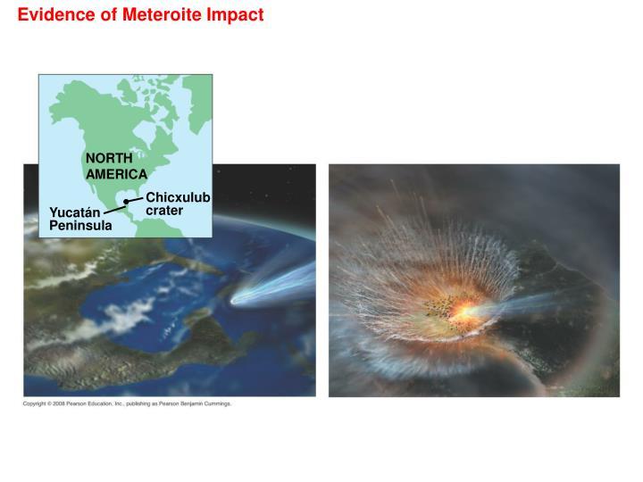 Evidence of Meteroite Impact