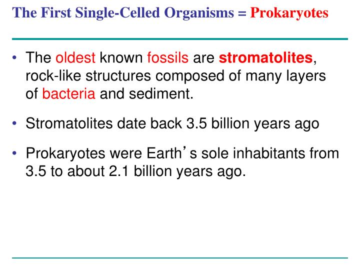 The First Single-Celled Organisms =