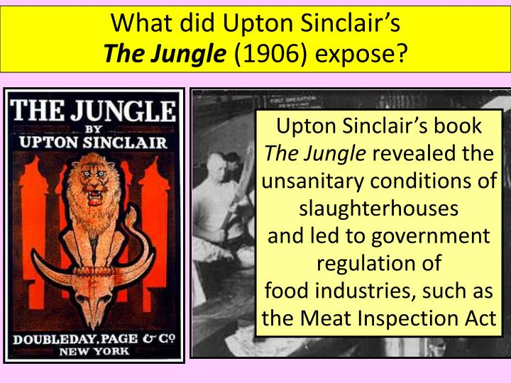 What did Upton Sinclair's