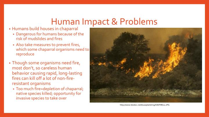 Human Impact & Problems