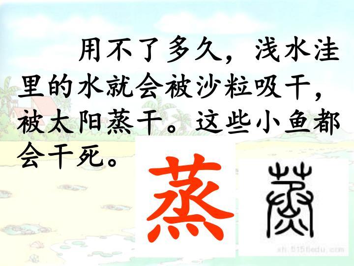 用不了多久,浅水洼里的水就会被沙粒吸干,被太阳蒸干。这些小鱼都会干死。