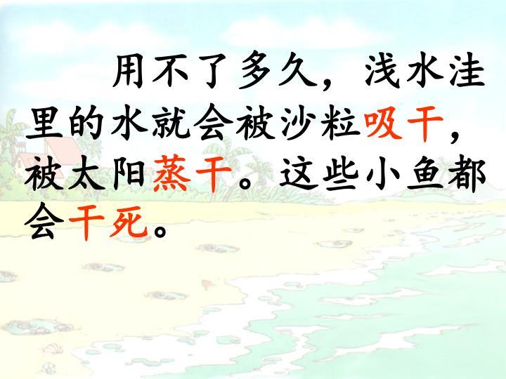 用不了多久,浅水洼里的水就会被沙粒