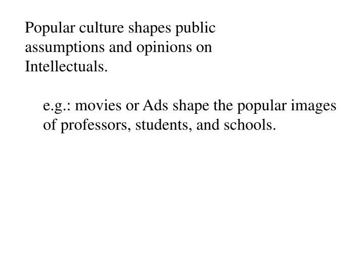 Popular culture shapes public