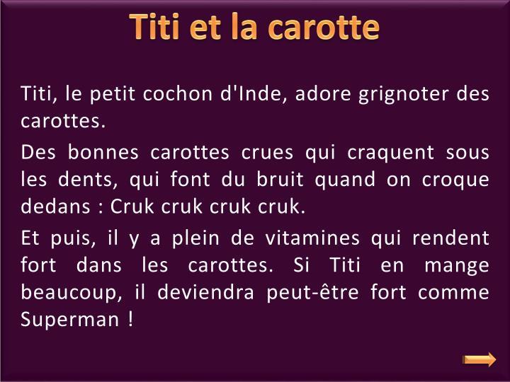 Titi, le petit cochon d'Inde, adore grignoter des carottes.