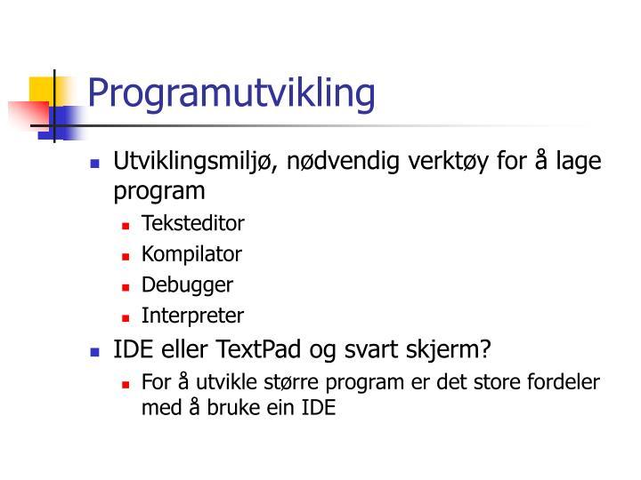 Programutvikling