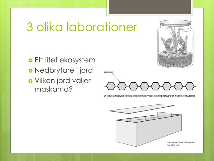 3 olika laborationer