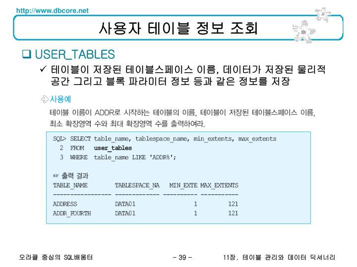 사용자 테이블 정보 조회