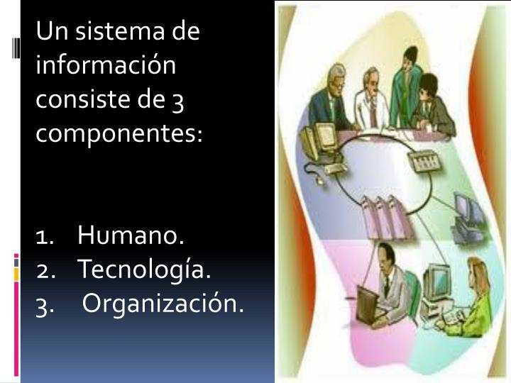 Un sistema de información consiste de 3 componentes