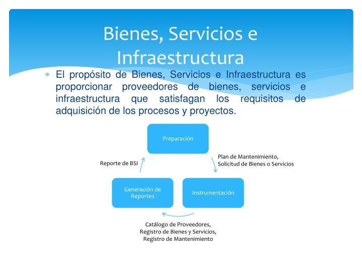 Bienes, Servicios e Infraestructura