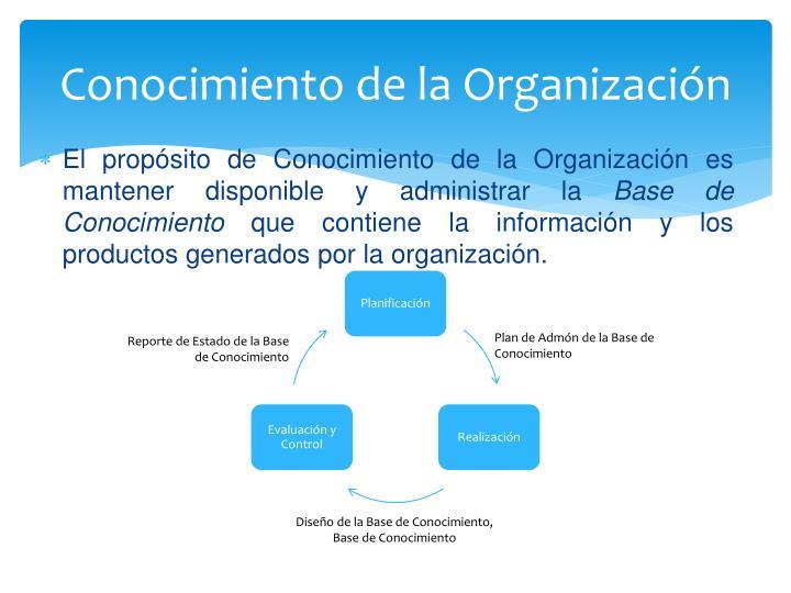 Conocimiento de la Organización