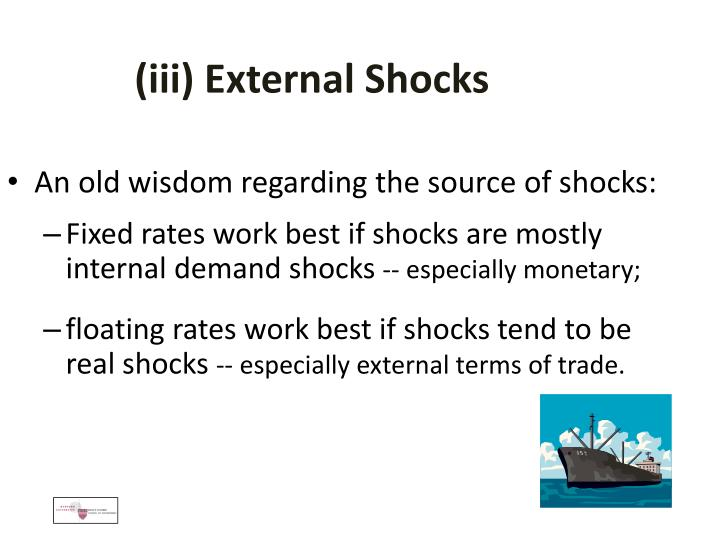 (iii) External Shocks