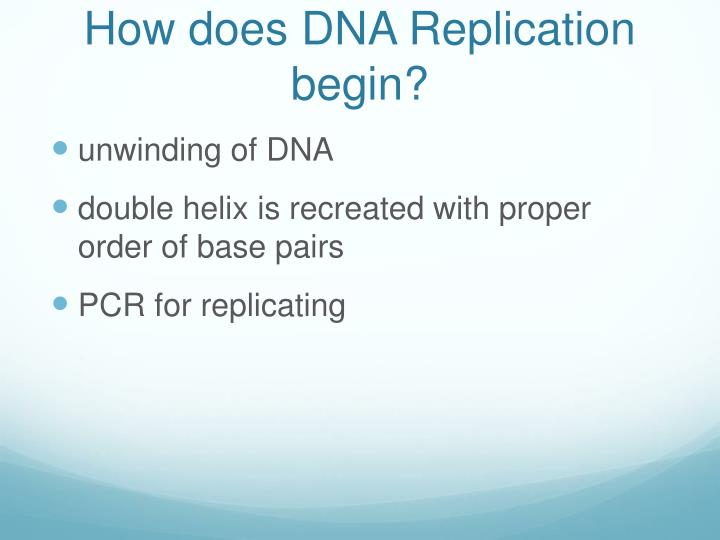 How does DNA Replication begin?